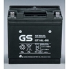 GS-T WaveRunner Battery
