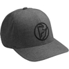 Iconic Flexfit Hat