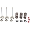 MOOSE RACING STAINLESS VALVE AND SPRING KITS