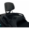 LinQ Passenger Backrest