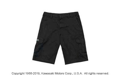DICKIES KAWASAKI THREE GREEN LINES SHORTS
