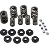 COMP CAMS VALVE SPRING KIT