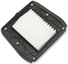 DRAG SPECIALTIES OEM-STYLE REPLACEMENT AIR FILTER ELEMENTS FOR INDIAN