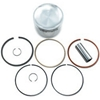 WISECO PERFORMANCE PRODUCTS HIGH-PERFORMANCE 2- AND 4-CYCLE MOTORCYCLE PISTONS