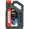 MOTUL SNOW 2T MOTOR OIL