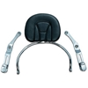 Revolution Driver Backrest