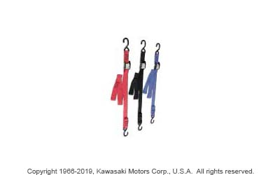 ANCRA BIG BIKE TIE-DOWN SET