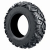 Maxxis Bighorn X DS Tire