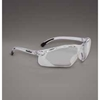 Fireline Safety Goggles
