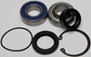 ALL BALLS CHAINCASE BEARING AND SEAL KIT